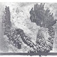 Relieve (Relief)